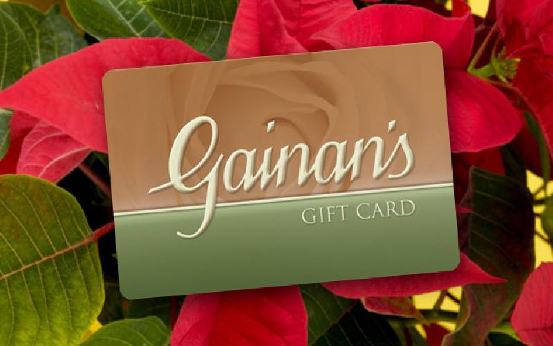 Gainan's Midtown Flowers - $25 Gift Card for $12.50