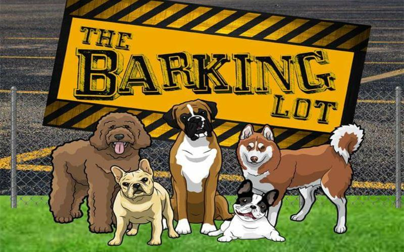 The Barking Lot - $50 Boarding for $25