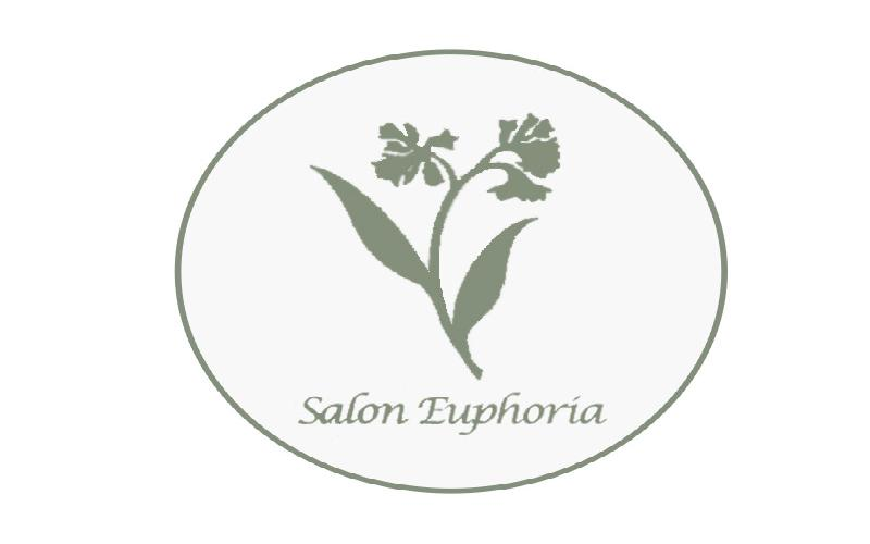 Salon Euphoria - $100 for $50 Holiday Treat