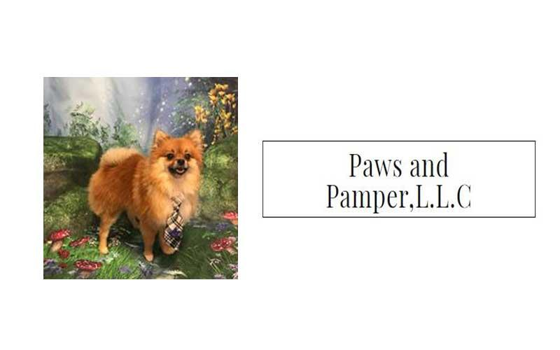 Paws And Pamper - Tea Cup Carte Blanche Priced at $133.00 (reg value $266)