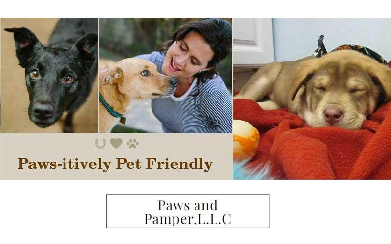 Paws And Pamper - Medium Dog Carte Blanche Priced at $212.00 (reg value $424.00)