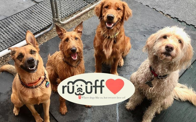 Ruuff Luv Doggie Day Care - $25 for $50 for Doggie Day Care or Boarding