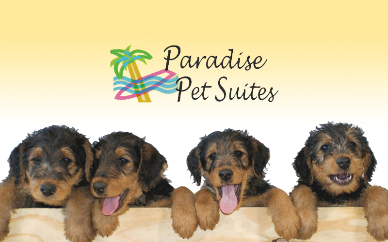 Paradise Pet Suites - 50% OFF Stays at Paradise Pet Suites!
