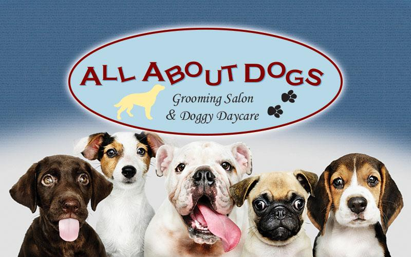 All About Dogs - 5-Day Doggie Daycare Pass