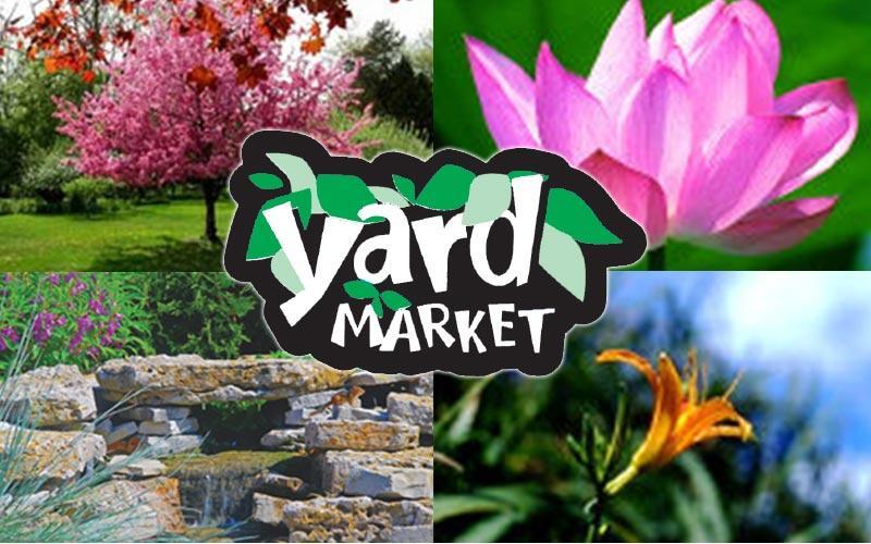 Yard Market - $50 for $100 Plants, Trees, Shrubs, Mulch & Rocks (or Landscape Design and Build)